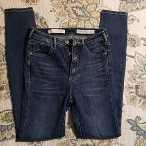 Anthropologie Jeans - Pilcro Superscript High-rise Skinny Jeans 25
